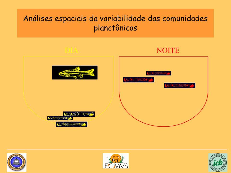 Análises espaciais da variabilidade das comunidades planctônicas NOITEDIA