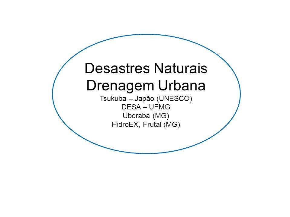 Desastres Naturais Drenagem Urbana Tsukuba – Japão (UNESCO) DESA – UFMG Uberaba (MG) HidroEX, Frutal (MG)