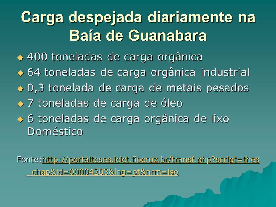 Carga despejada diariamente na Baía de Guanabara 400 toneladas de carga orgânica 400 toneladas de carga orgânica 64 toneladas de carga orgânica industrial 64 toneladas de carga orgânica industrial 0,3 tonelada de carga de metais pesados 0,3 tonelada de carga de metais pesados 7 toneladas de carga de óleo 7 toneladas de carga de óleo 6 toneladas de carga orgânica de lixo Doméstico 6 toneladas de carga orgânica de lixo Doméstico Fonte:http://portalteses.icict.fiocruz.br/transf.php?script=thes _chap&id=00004203&lng=pt&nrm=iso http://portalteses.icict.fiocruz.br/transf.php?script=thes _chap&id=00004203&lng=pt&nrm=isohttp://portalteses.icict.fiocruz.br/transf.php?script=thes _chap&id=00004203&lng=pt&nrm=iso