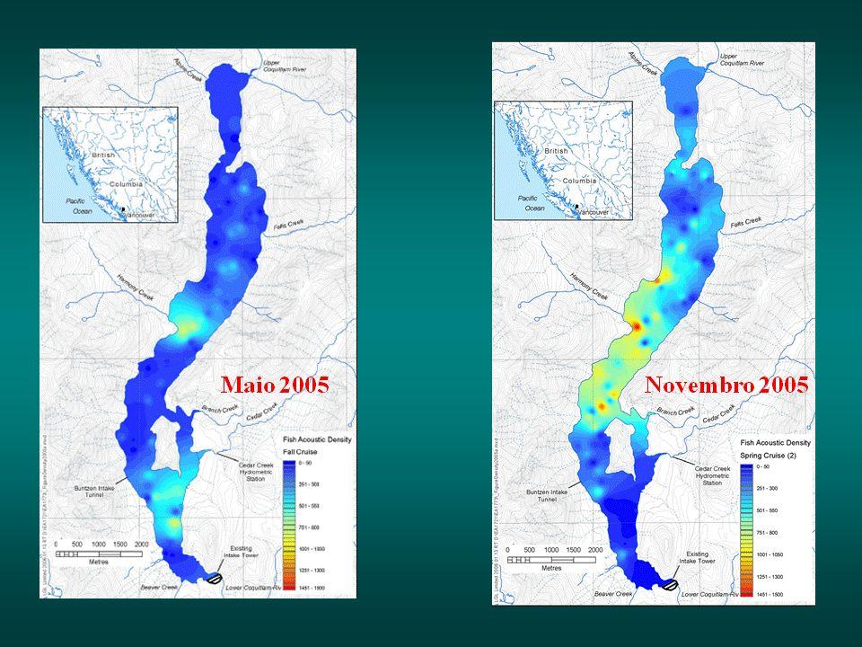 Lagoa Santa – resultados preliminares