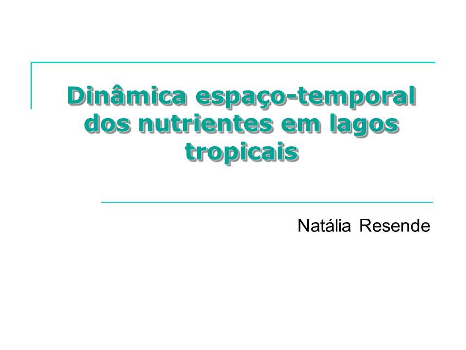 Dinâmica espaço-temporal dos nutrientes em lagos tropicais Natália Resende