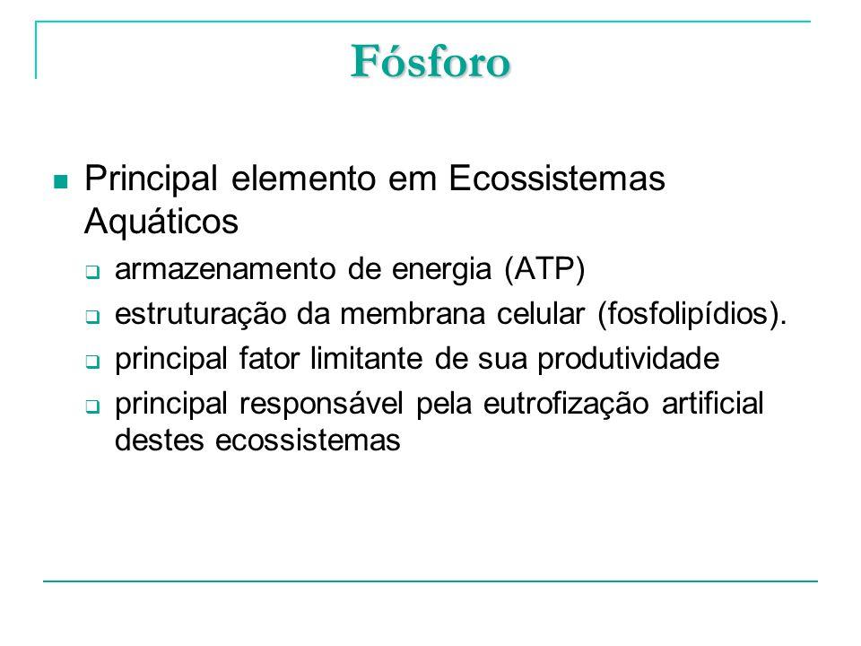 Fósforo Principal elemento em Ecossistemas Aquáticos armazenamento de energia (ATP) estruturação da membrana celular (fosfolipídios). principal fator