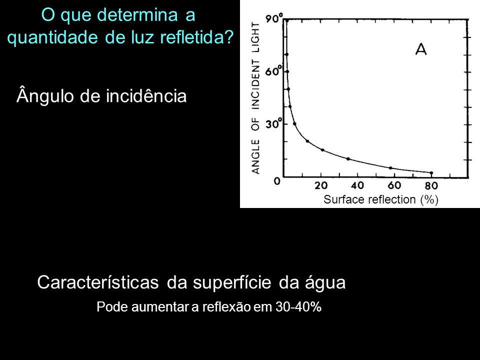 Características da superfície da água O que determina a quantidade de luz refletida? Ângulo de incidência Surface reflection (%) Pode aumentar a refle