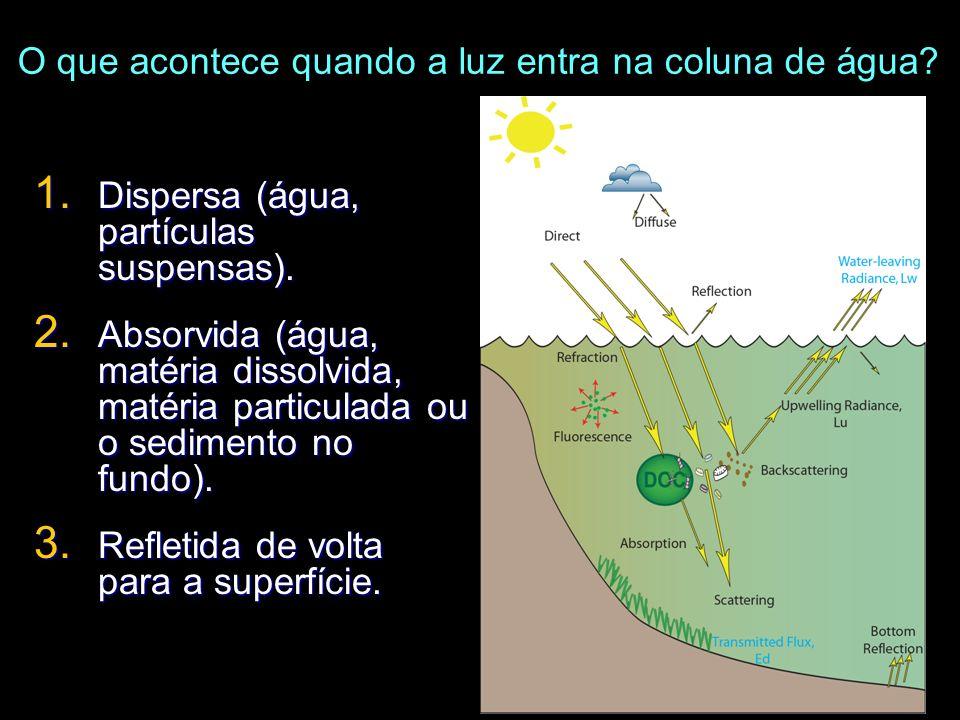 O que acontece quando a luz entra na coluna de água? 1. Dispersa (água, partículas suspensas). 2. Absorvida (água, matéria dissolvida, matéria particu