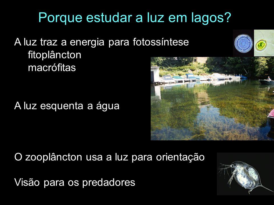 A luz traz a energia para fotossíntese fitoplâncton macrófitas A luz esquenta a água O zooplâncton usa a luz para orientação Visão para os predadores