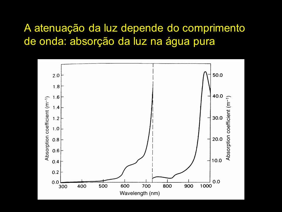 A atenuação da luz depende do comprimento de onda: absorção da luz na água pura