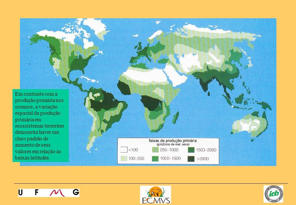 Em contraste com a produção primária nos oceanos, a variação espacial da produção primária em ecossistemas terrestres demonstra haver um claro padrão