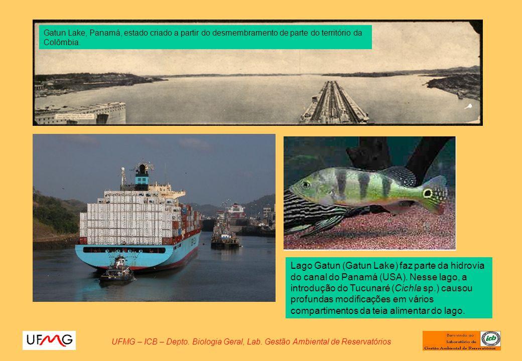 UFMG – ICB – Depto. Biologia Geral, Lab. Gestão Ambiental de Reservatórios Lago Gatun (Gatun Lake) faz parte da hidrovia do canal do Panamá (USA). Nes