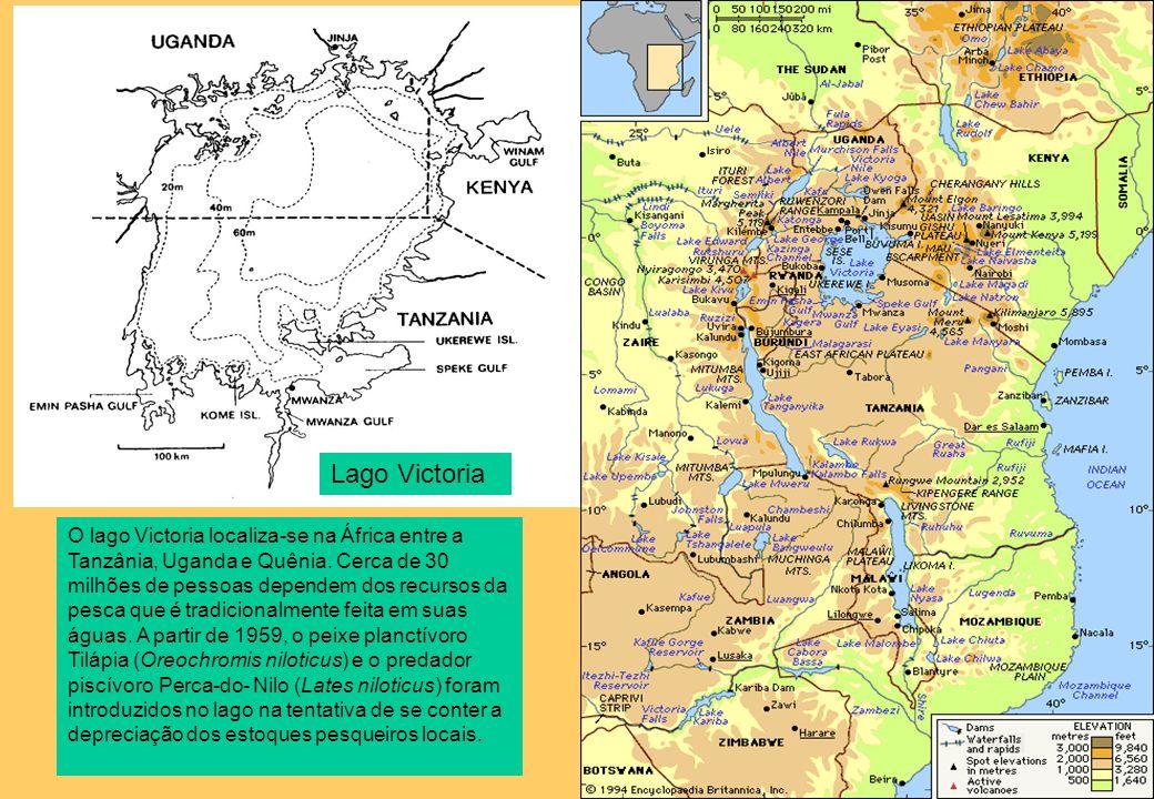 O lago Victoria localiza-se na África entre a Tanzânia, Uganda e Quênia. Cerca de 30 milhões de pessoas dependem dos recursos da pesca que é tradicion