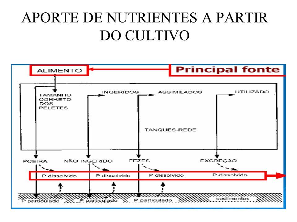 APORTE DE NUTRIENTES A PARTIR DO CULTIVO