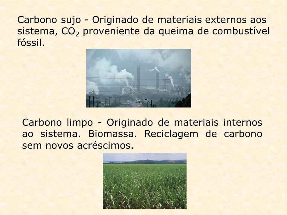 Carbono sujo - Originado de materiais externos aos sistema, CO 2 proveniente da queima de combustível fóssil. Carbono limpo - Originado de materiais i