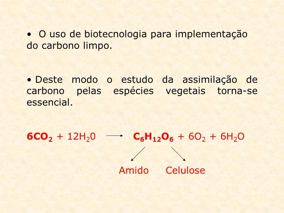 O uso de biotecnologia para implementação do carbono limpo. Deste modo o estudo da assimilação de carbono pelas espécies vegetais torna-se essencial.