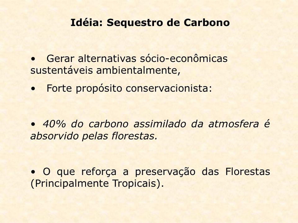 Idéia: Sequestro de Carbono Gerar alternativas sócio-econômicas sustentáveis ambientalmente, Forte propósito conservacionista: 40% do carbono assimila