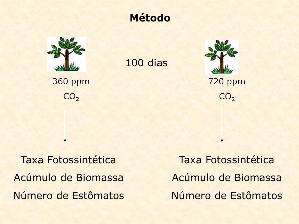 Método 360 ppm CO 2 720 ppm CO 2 Taxa Fotossintética Acúmulo de Biomassa Número de Estômatos Taxa Fotossintética Acúmulo de Biomassa Número de Estômat
