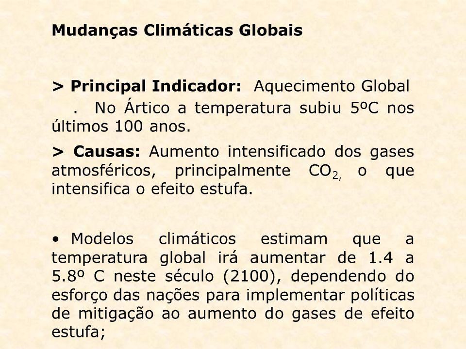 Mudanças Climáticas Globais > Principal Indicador: Aquecimento Global. No Ártico a temperatura subiu 5ºC nos últimos 100 anos. > Causas: Aumento inten