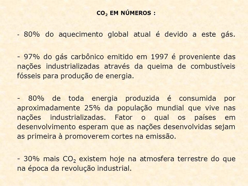 CO 2 EM NÚMEROS : - 80% do aquecimento global atual é devido a este gás. - 97% do gás carbônico emitido em 1997 é proveniente das nações industrializa