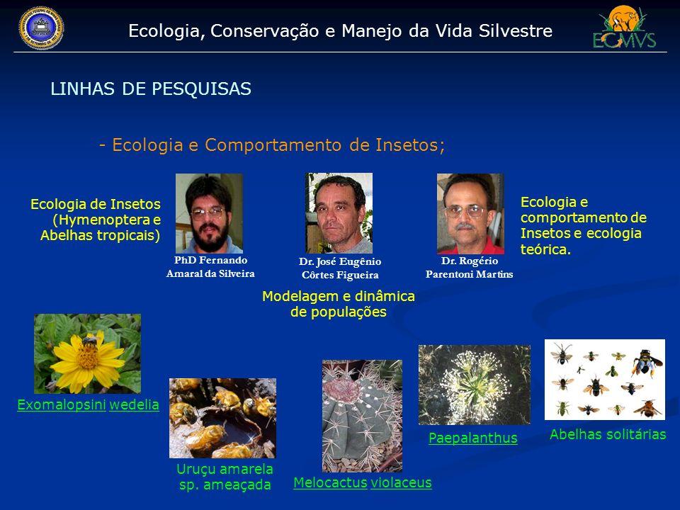 Ecologia, Conservação e Manejo da Vida Silvestre LINHAS DE PESQUISAS - Ecologia e Comportamento de Insetos; PhD Fernando Amaral da Silveira Dr. Rogéri