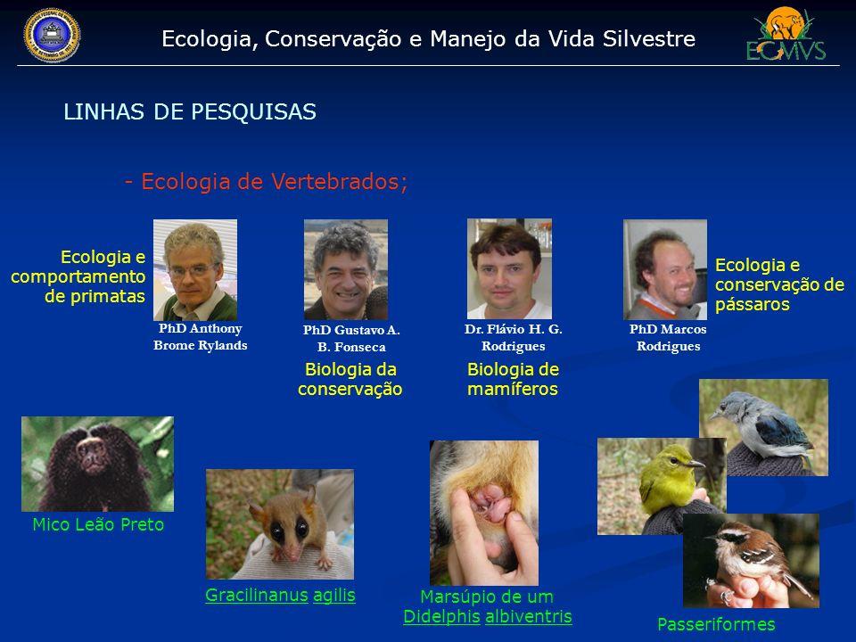 Ecologia, Conservação e Manejo da Vida Silvestre LINHAS DE PESQUISAS - Ecologia de Vertebrados; PhD Anthony Brome Rylands PhD Gustavo A. B. Fonseca Ph