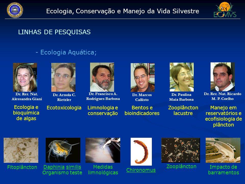 Ecologia, Conservação e Manejo da Vida Silvestre LINHAS DE PESQUISAS - Ecologia Aquática; Dr. Rer. Nat. Alessandra Giani Dr. Francisco A. Rodrigues Ba