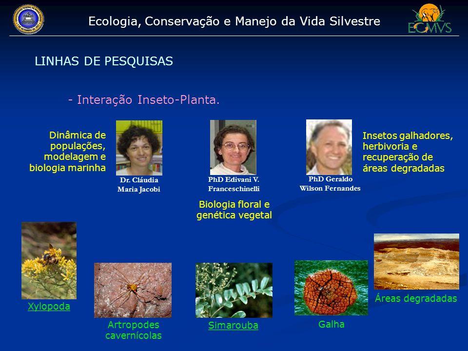 Ecologia, Conservação e Manejo da Vida Silvestre LINHAS DE PESQUISAS - Interação Inseto-Planta. Dr. Cláudia Maria Jacobi PhD Edivani V. Franceschinell