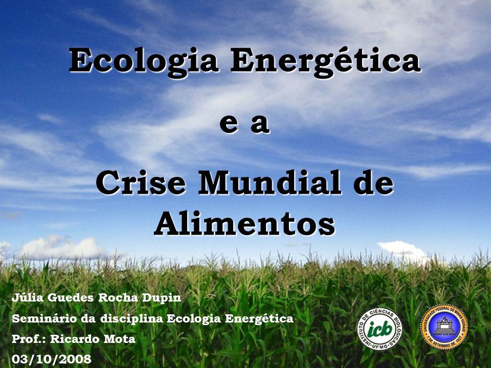 Ecologia Energética e a Crise Mundial de Alimentos Júlia Guedes Rocha Dupin Seminário da disciplina Ecologia Energética Prof.: Ricardo Mota 03/10/2008