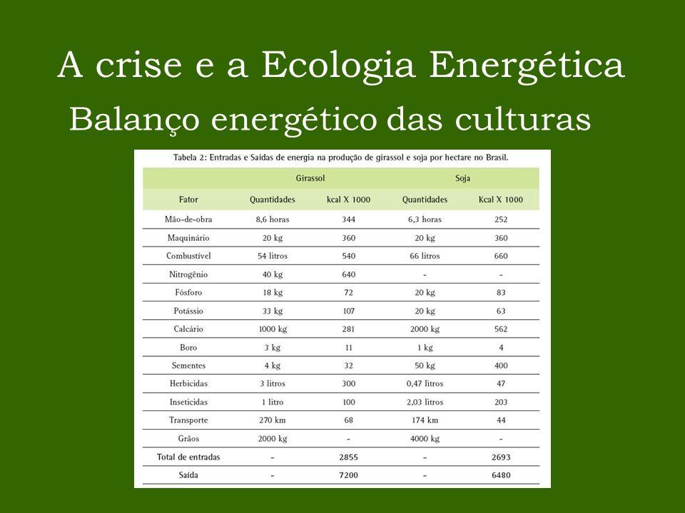 A crise e a Ecologia Energética Balanço energético das culturas