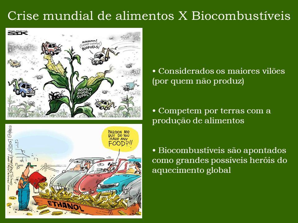 Crise mundial de alimentos X Biocombustíveis Considerados os maiores vilões (por quem não produz) Competem por terras com a produção de alimentos Bioc