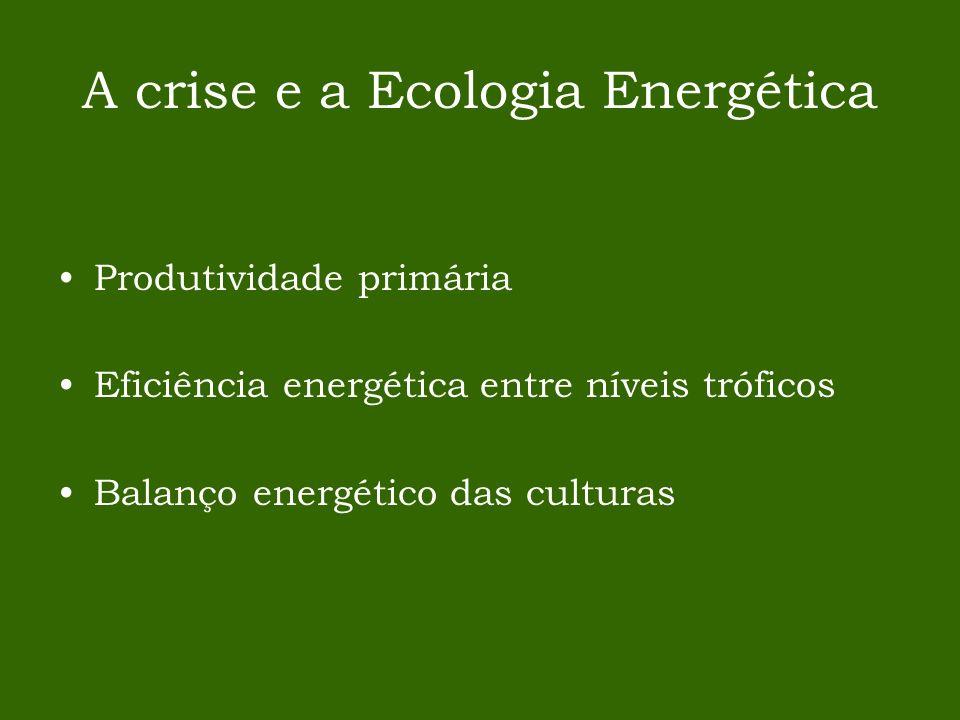 A crise e a Ecologia Energética Produtividade primária Eficiência energética entre níveis tróficos Balanço energético das culturas
