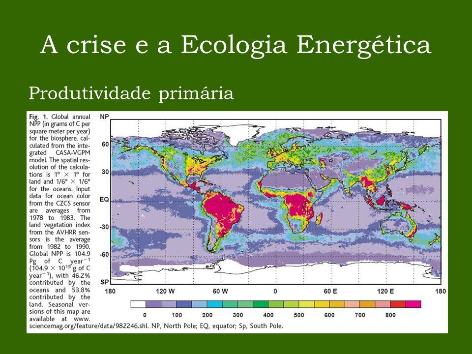 A crise e a Ecologia Energética Produtividade primária