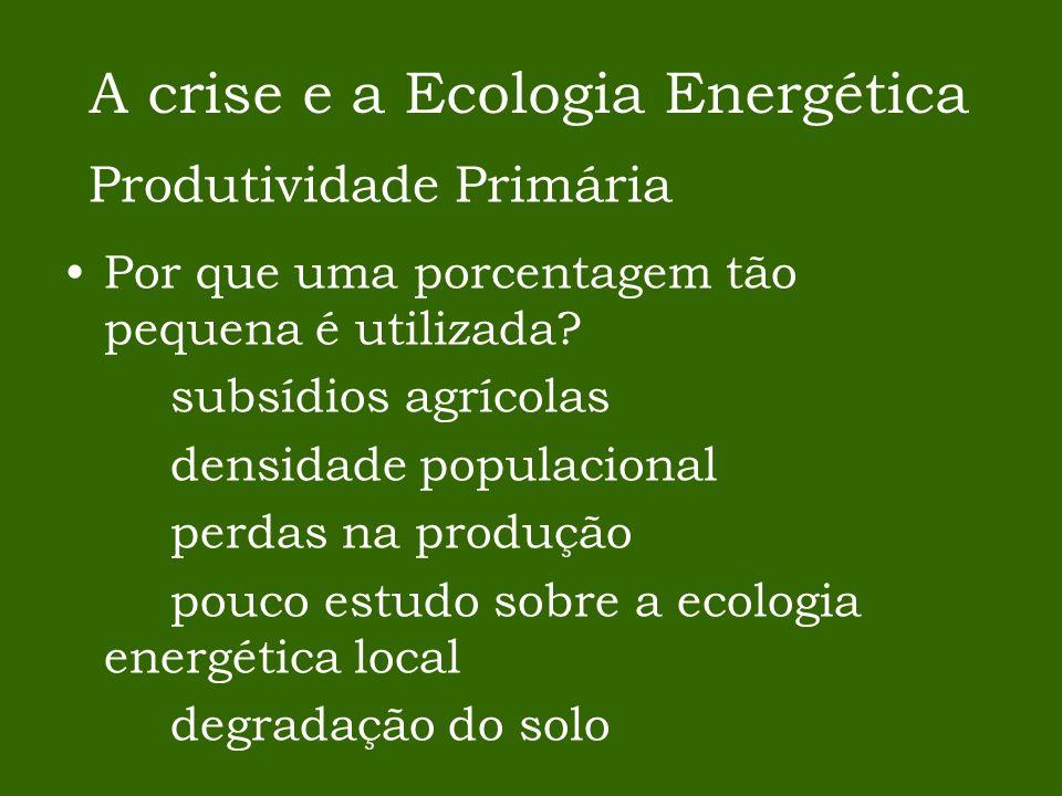 Por que uma porcentagem tão pequena é utilizada? subsídios agrícolas densidade populacional perdas na produção pouco estudo sobre a ecologia energétic