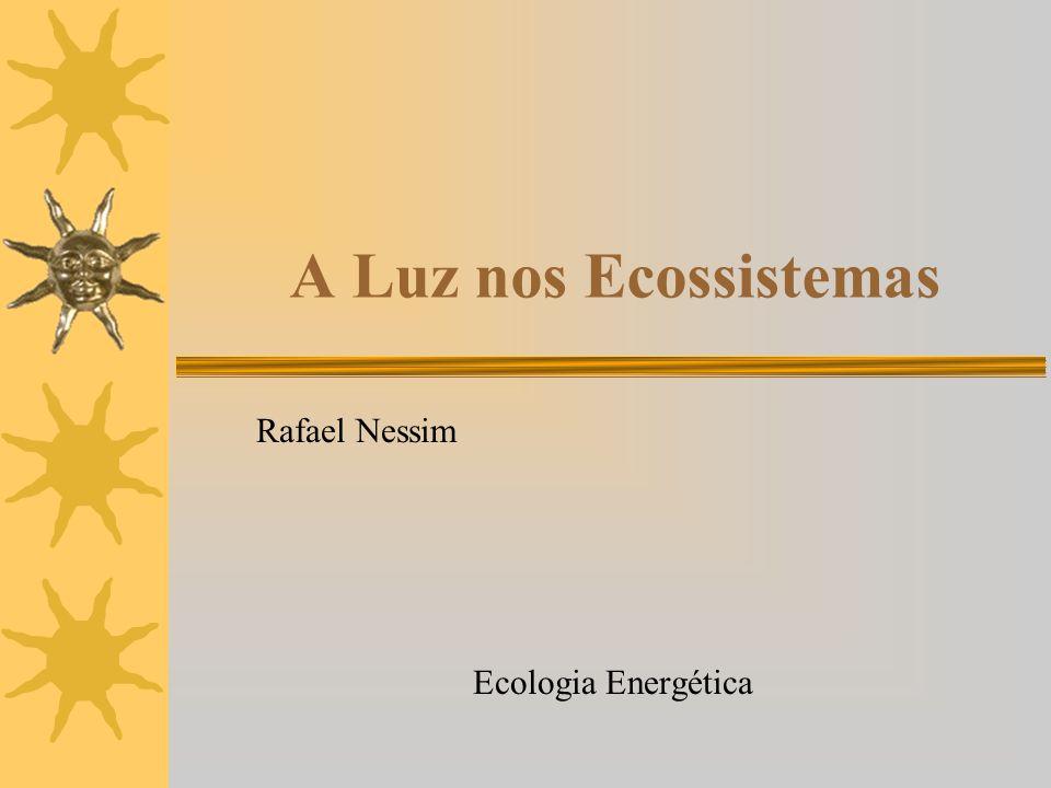 A Luz nos Ecossistemas Rafael Nessim Ecologia Energética