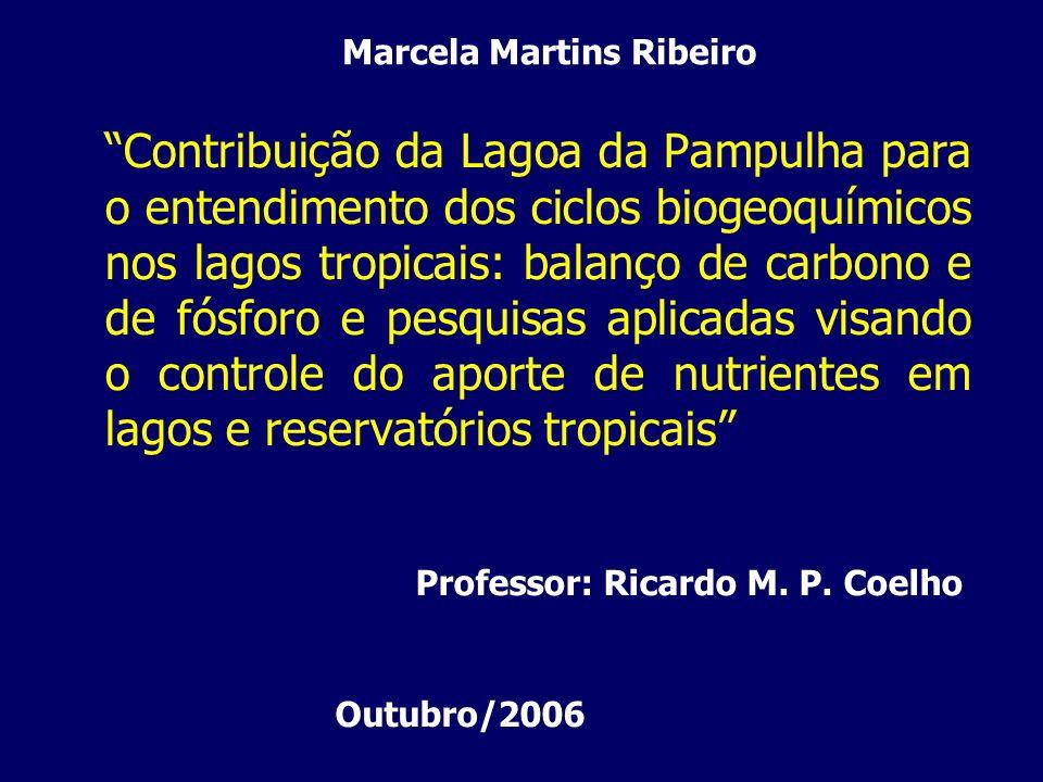 Contribuição da Lagoa da Pampulha para o entendimento dos ciclos biogeoquímicos nos lagos tropicais: balanço de carbono e de fósforo e pesquisas aplic