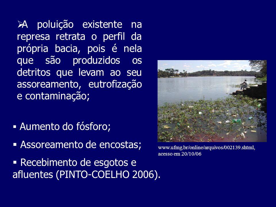 A poluição existente na represa retrata o perfil da própria bacia, pois é nela que são produzidos os detritos que levam ao seu assoreamento, eutrofiza