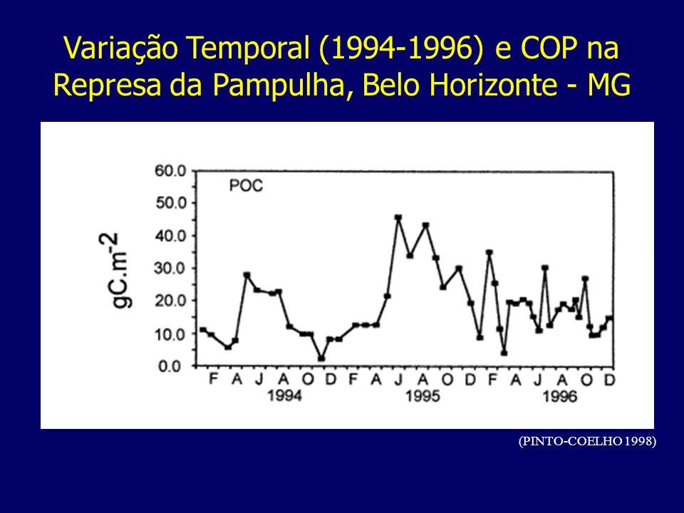 Variação Temporal (1994-1996) e COP na Represa da Pampulha, Belo Horizonte - MG (PINTO-COELHO 1998)