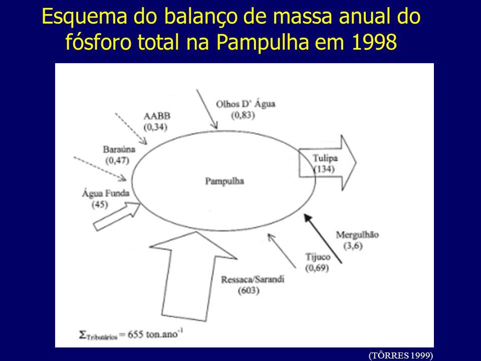 (TÔRRES 1999) Esquema do balanço de massa anual do fósforo total na Pampulha em 1998