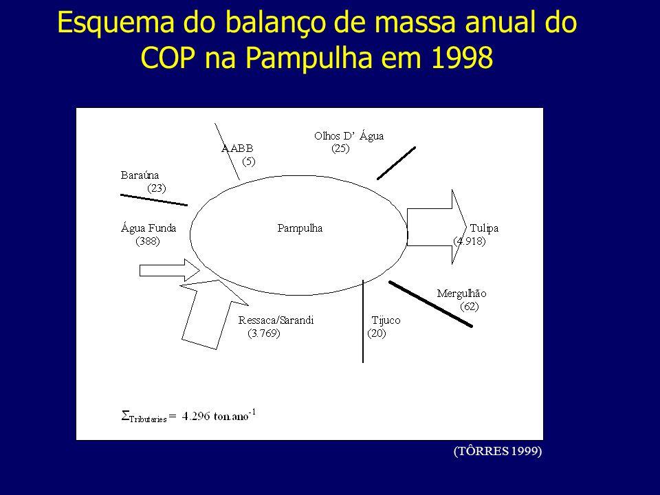 Esquema do balanço de massa anual do COP na Pampulha em 1998 (TÔRRES 1999)