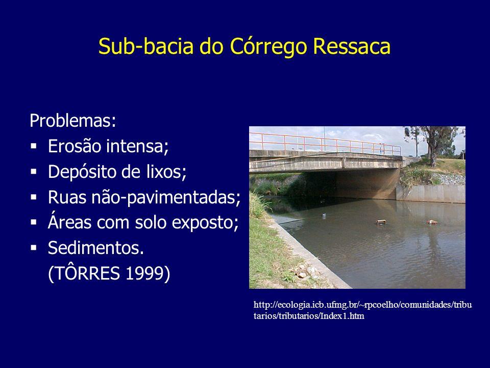 Sub-bacia do Córrego Ressaca Problemas: Erosão intensa; Depósito de lixos; Ruas não-pavimentadas; Áreas com solo exposto; Sedimentos. (TÔRRES 1999) ht