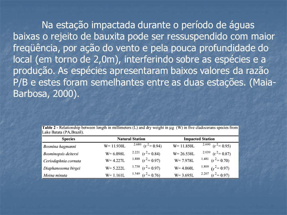 Na estação impactada durante o período de águas baixas o rejeito de bauxita pode ser ressuspendido com maior freqüência, por ação do vento e pela pouc