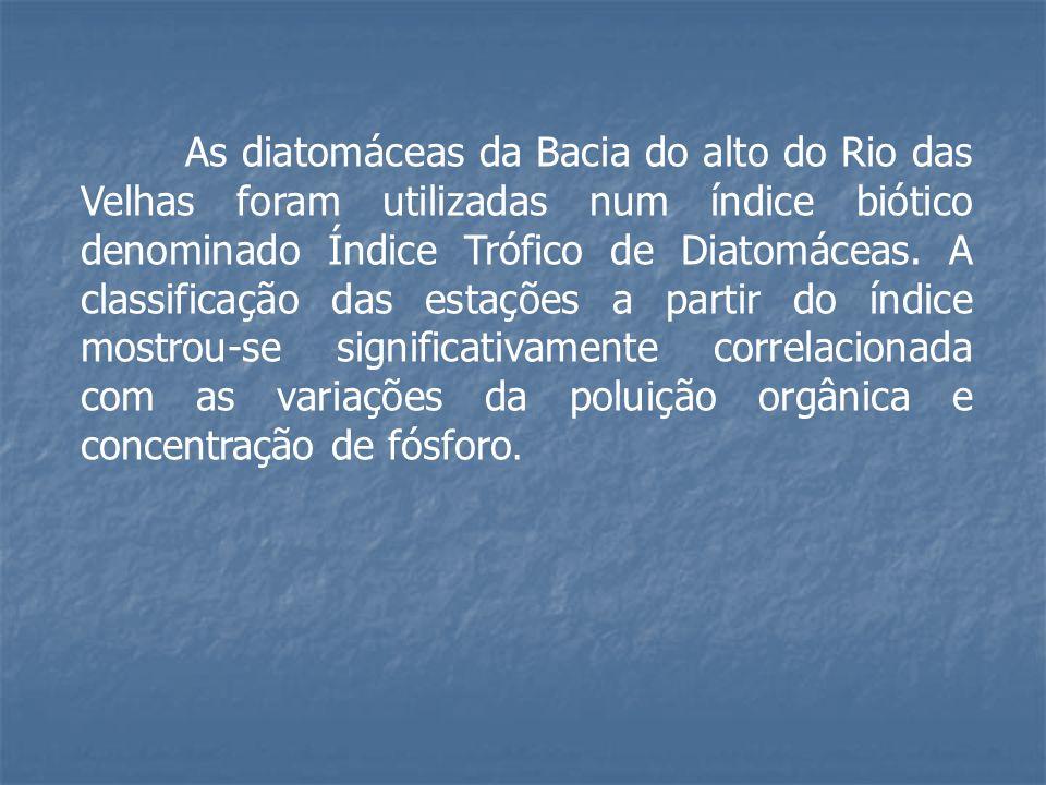 As diatomáceas da Bacia do alto do Rio das Velhas foram utilizadas num índice biótico denominado Índice Trófico de Diatomáceas. A classificação das es
