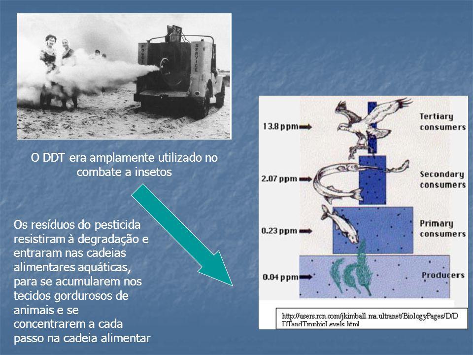 O DDT era amplamente utilizado no combate a insetos Os resíduos do pesticida resistiram à degradação e entraram nas cadeias alimentares aquáticas, par