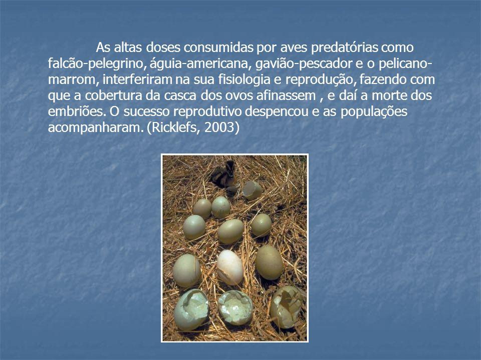 As altas doses consumidas por aves predatórias como falcão-pelegrino, águia-americana, gavião-pescador e o pelicano- marrom, interferiram na sua fisio