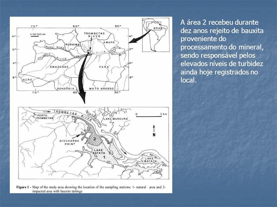 A área 2 recebeu durante dez anos rejeito de bauxita proveniente do processamento do mineral, sendo responsável pelos elevados níveis de turbidez aind
