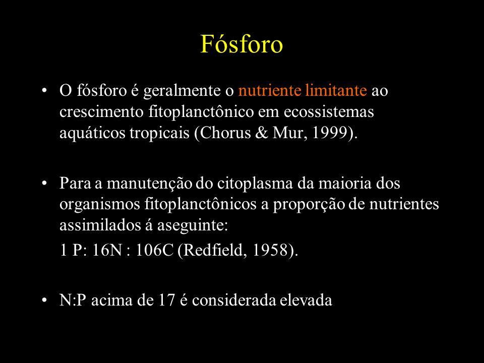 Fósforo O fósforo é geralmente o nutriente limitante ao crescimento fitoplanctônico em ecossistemas aquáticos tropicais (Chorus & Mur, 1999). Para a m