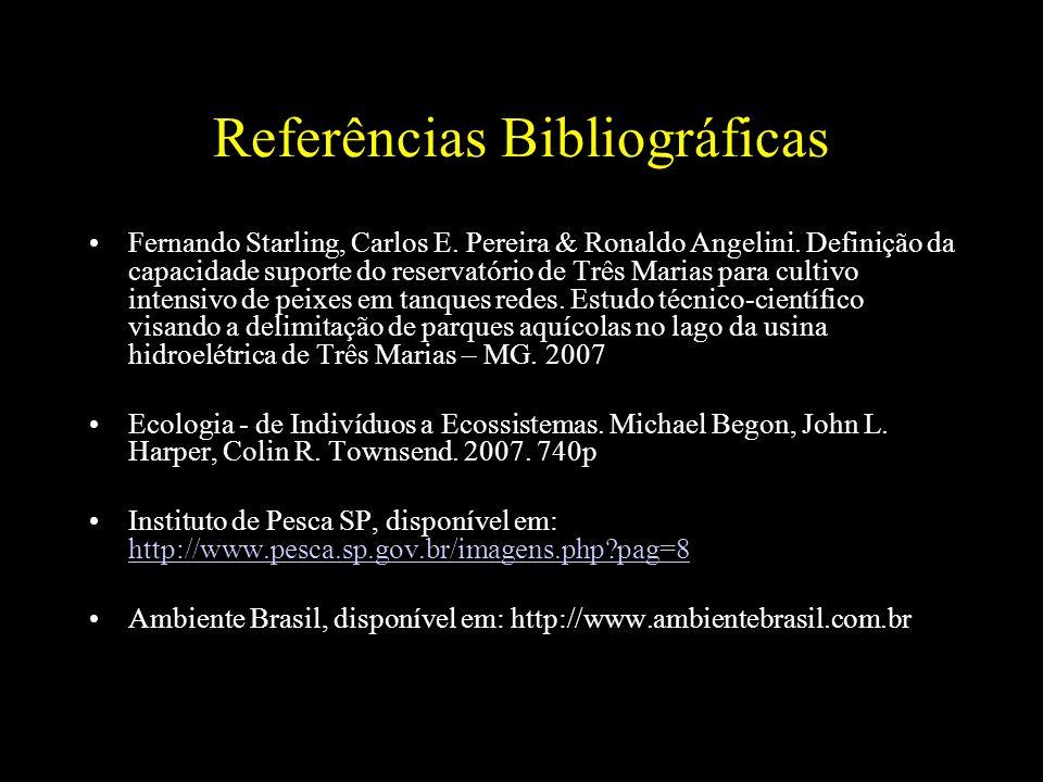 Referências Bibliográficas Fernando Starling, Carlos E. Pereira & Ronaldo Angelini. Definição da capacidade suporte do reservatório de Três Marias par