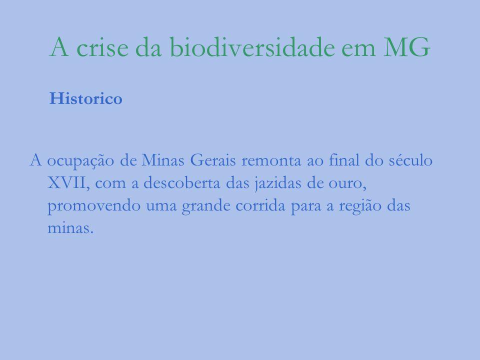 A crise da biodiversidade em MG Historico A ocupação de Minas Gerais remonta ao final do século XVII, com a descoberta das jazidas de ouro, promovendo