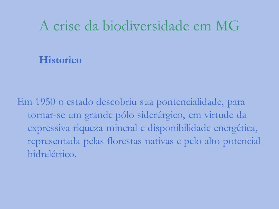A crise da biodiversidade em MG Historico Em 1950 o estado descobriu sua pontencialidade, para tornar-se um grande pólo siderúrgico, em virtude da exp
