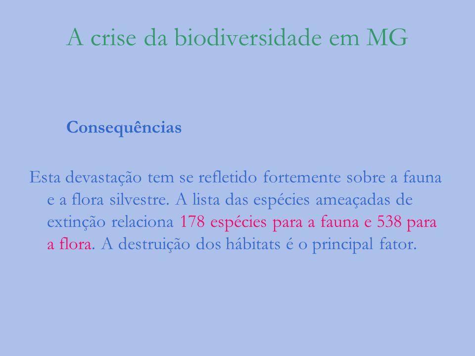 A crise da biodiversidade em MG Consequências Esta devastação tem se refletido fortemente sobre a fauna e a flora silvestre. A lista das espécies amea