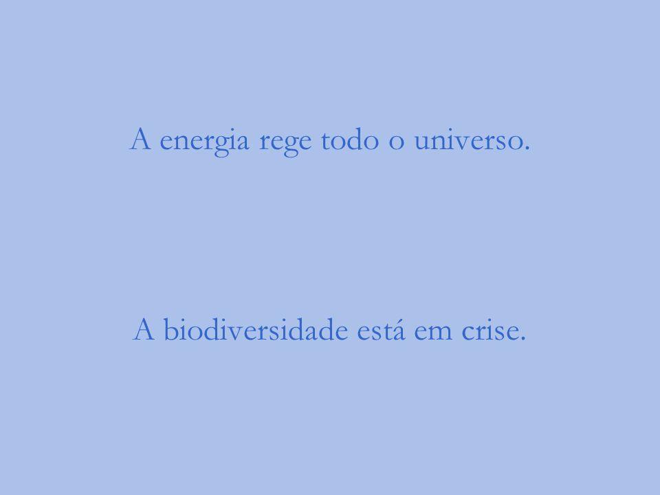 A energia rege todo o universo. A biodiversidade está em crise.