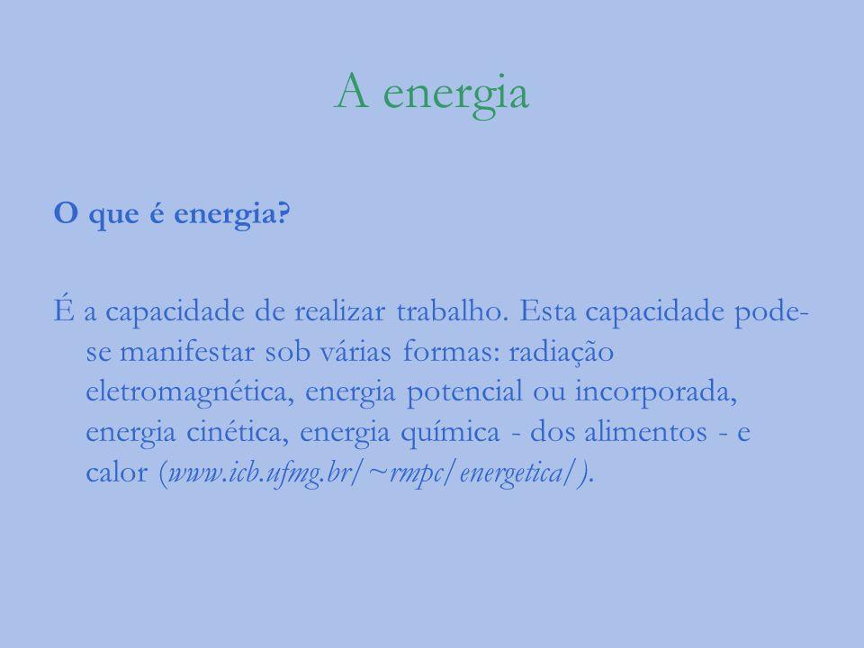 A energia O que é energia? É a capacidade de realizar trabalho. Esta capacidade pode- se manifestar sob várias formas: radiação eletromagnética, energ
