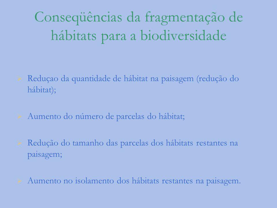 Conseqüências da fragmentação de hábitats para a biodiversidade Reduçao da quantidade de hábitat na paisagem (redução do hábitat); Aumento do número d